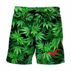 Short de bain cannabis