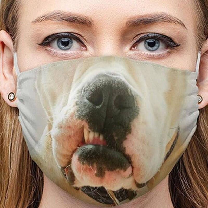 Masque chien pitbull